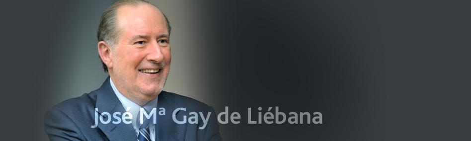 entrevista a jose maria gay de liebana