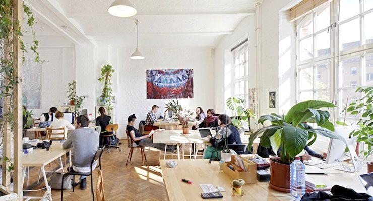 Oportunidades para alcanzar el éxito en los negocios desde un coworking, según The Garden Space