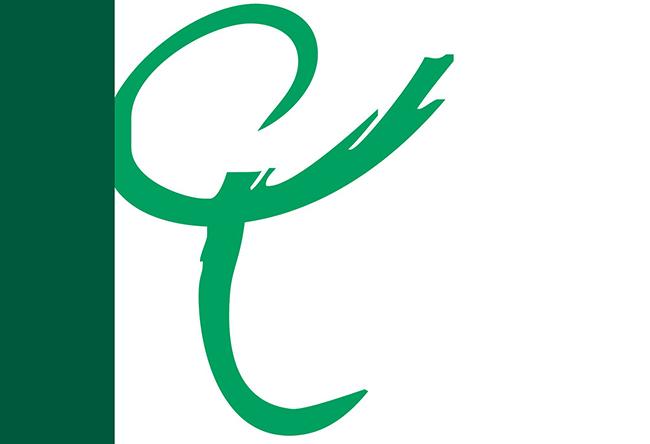 El CEF.- publica su Guía Fiscal 2018