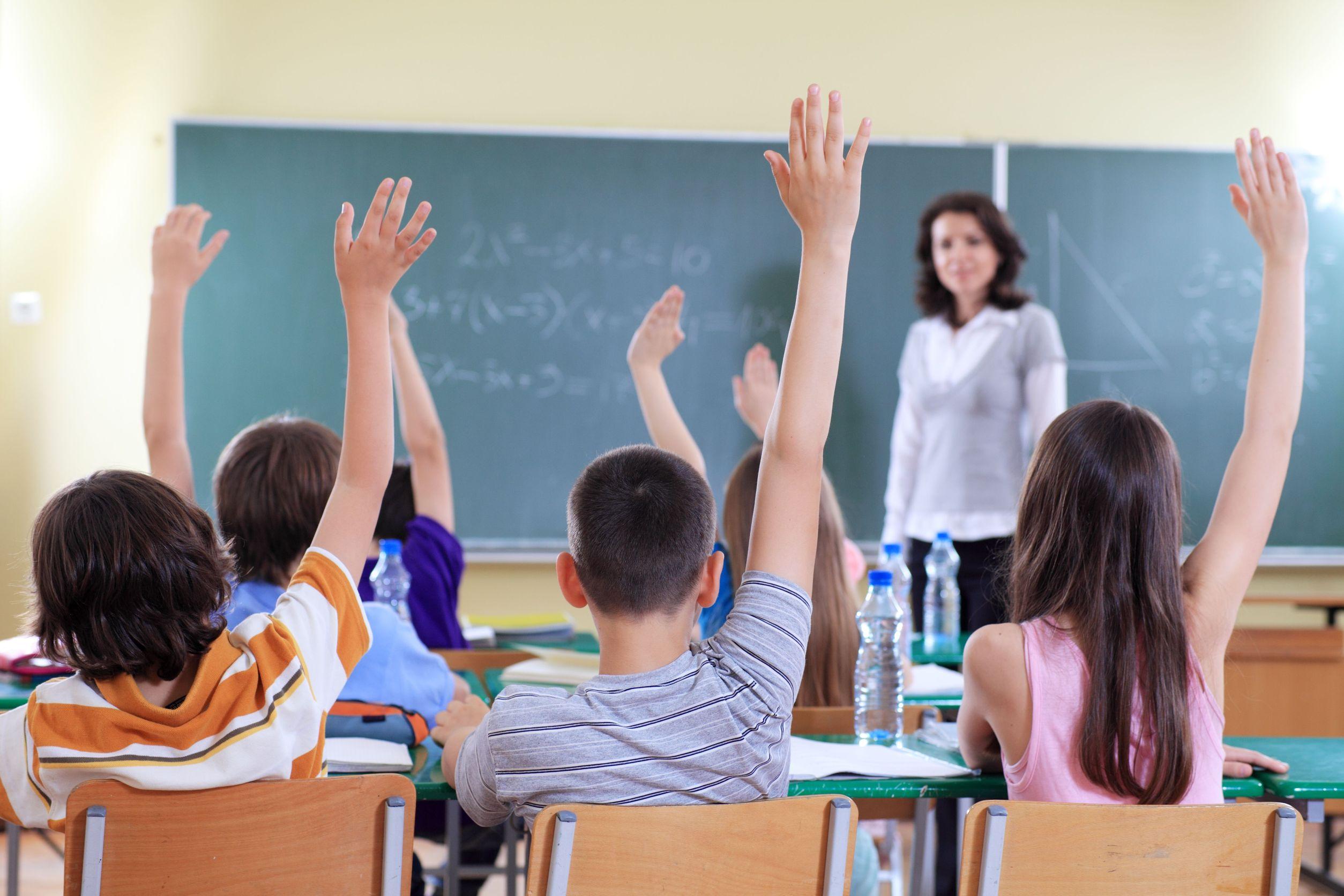Franquicias Educativas en España, un sector en alza